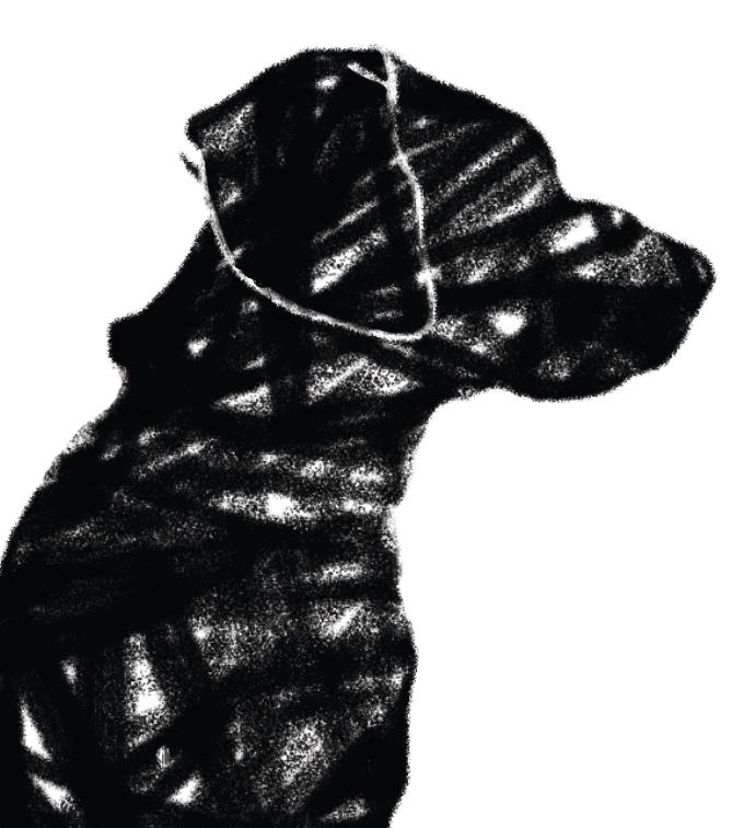 Bonneviale Florent – Black Dog Day Studio
