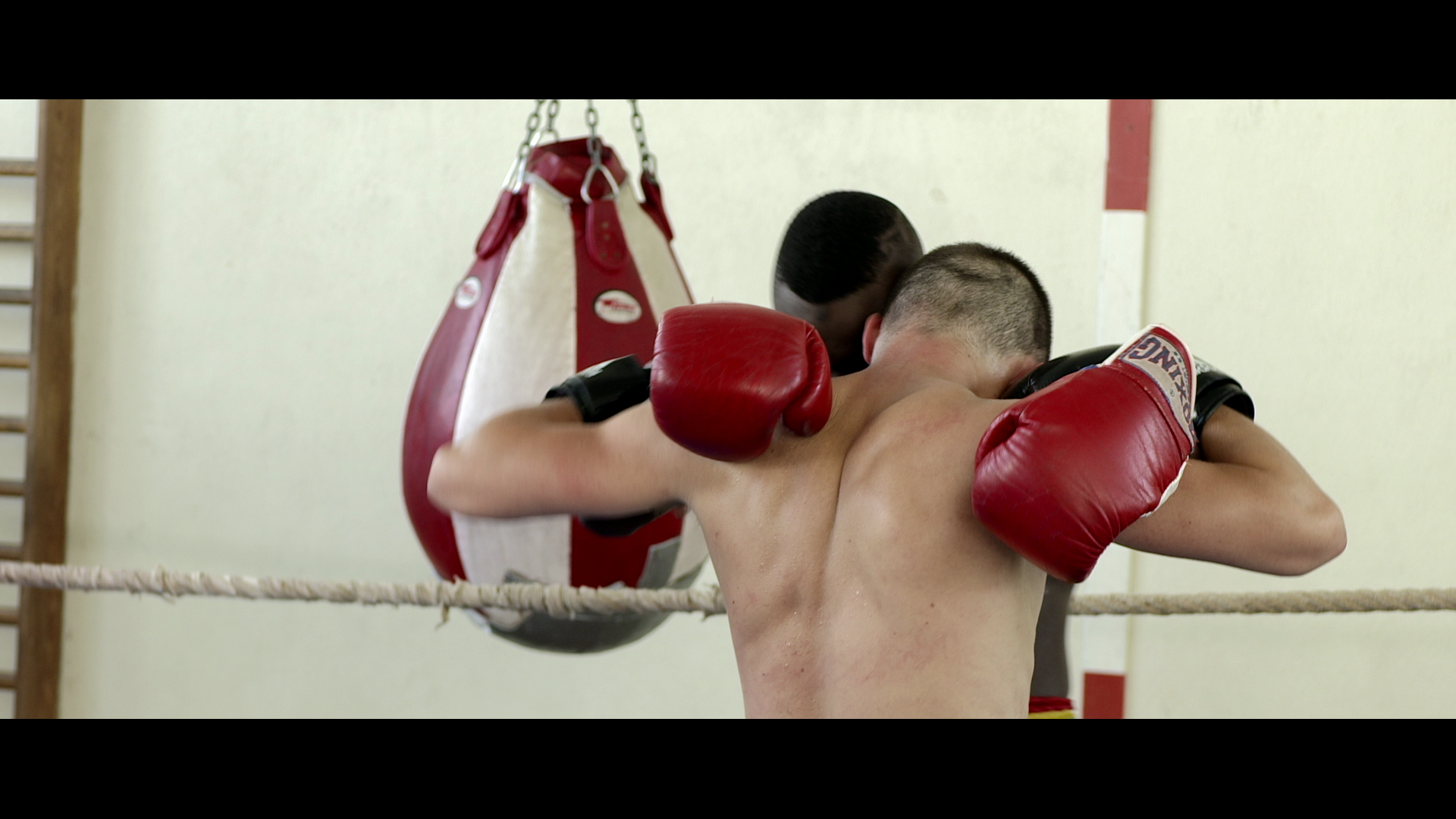 Tard sur le port - boxing
